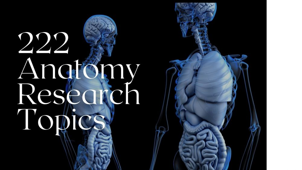 222 Out-Of-The-World Anatomy Research Topics in 2021